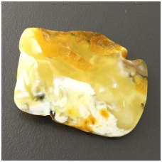 Geltonai baltas gintaro gabaliukas